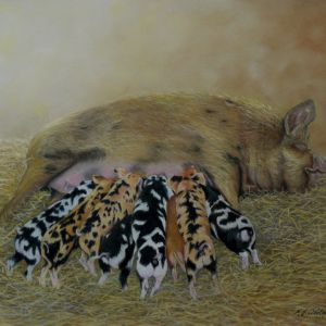 Kui Kuni with Multicoloured Piglets