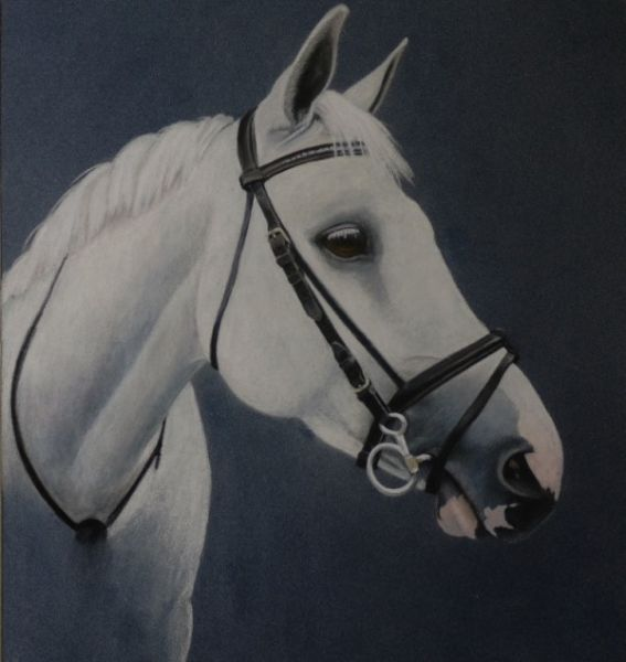 Katy's Mare  commission